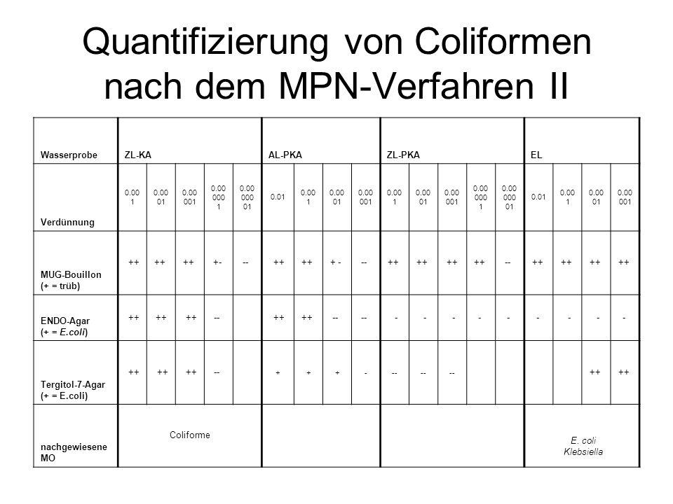 Quantifizierung von Coliformen nach dem MPN-Verfahren II WasserprobeZL-KAAL-PKAZL-PKA EL Verdünnung 0.00 1 0.00 01 0.00 001 0.00 000 1 0.00 000 01 0.0