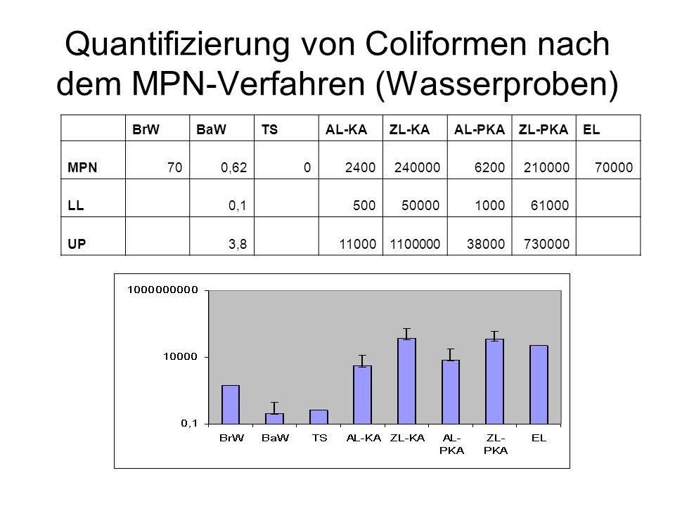 Quantifizierung von Coliformen nach dem MPN-Verfahren (Wasserproben) BrWBaWTSAL-KAZL-KAAL-PKAZL-PKAEL MPN700,6202400240000620021000070000 LL 0,1 50050