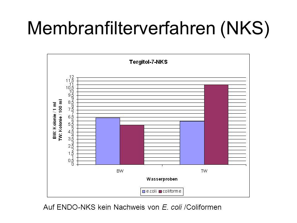 Membranfilterverfahren (NKS) Auf ENDO-NKS kein Nachweis von E. coli /Coliformen