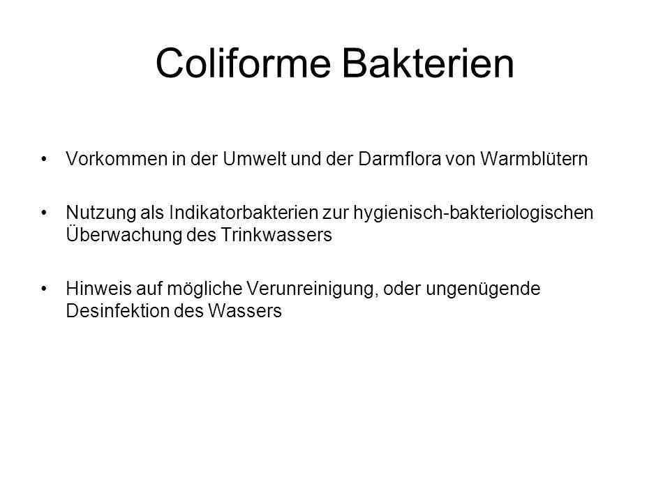 Coliforme Bakterien Vorkommen in der Umwelt und der Darmflora von Warmblütern Nutzung als Indikatorbakterien zur hygienisch-bakteriologischen Überwach