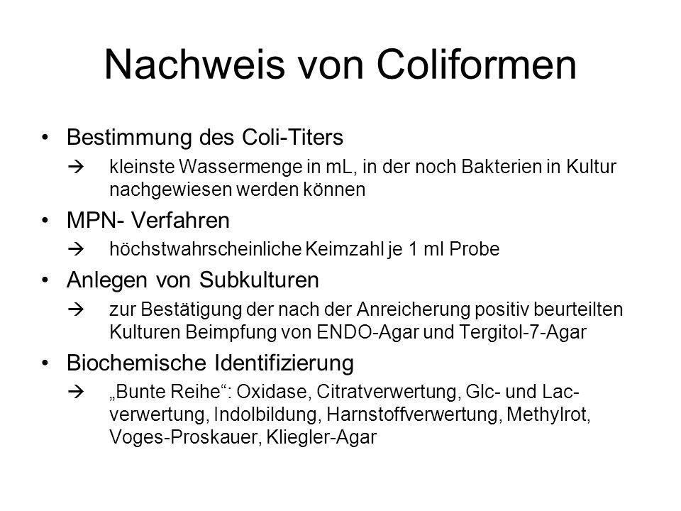 Nachweis von Coliformen Bestimmung des Coli-Titers kleinste Wassermenge in mL, in der noch Bakterien in Kultur nachgewiesen werden können MPN- Verfahr