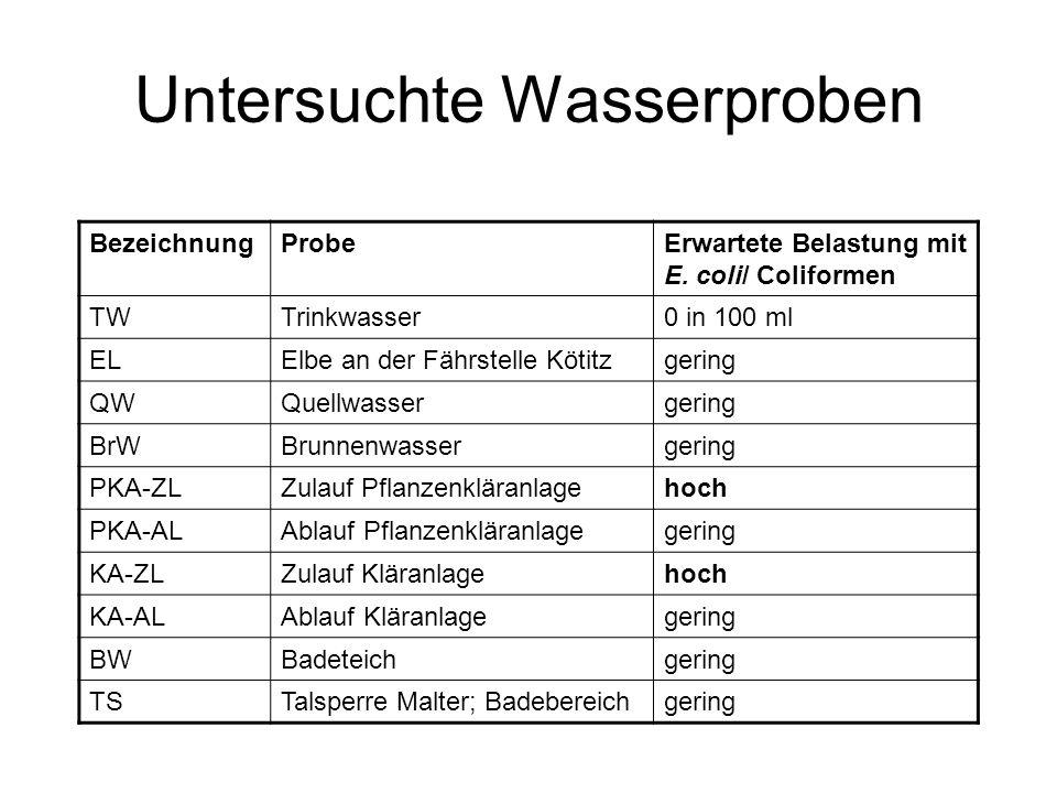 Untersuchte Wasserproben BezeichnungProbeErwartete Belastung mit E. coli/ Coliformen TWTrinkwasser0 in 100 ml ELElbe an der Fährstelle Kötitzgering QW