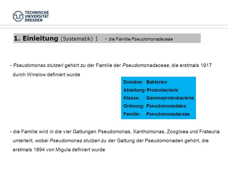 1. Einleitung (Systematik) I - die Familie Pseudomonadaceae - Pseudomonas stutzeri gehört zu der Familie der Pseudomonadaceae, die erstmals 1917 durch