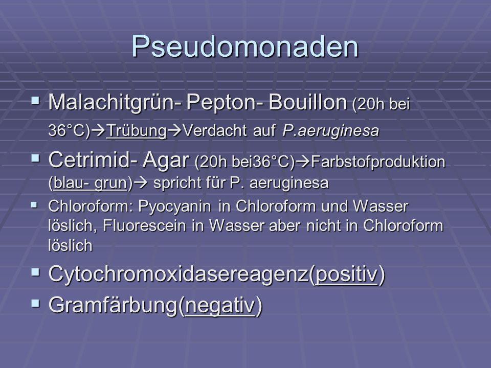 Einzelkolonien Gelbfärbung der Bouillon Gelbfärbung der Bouillon Überimpfung auf GSP-Agar Überimpfung auf GSP-Agar gelbe Kolonien Bestätigungsreaktionen gelbe Kolonien Bestätigungsreaktionen Abb.