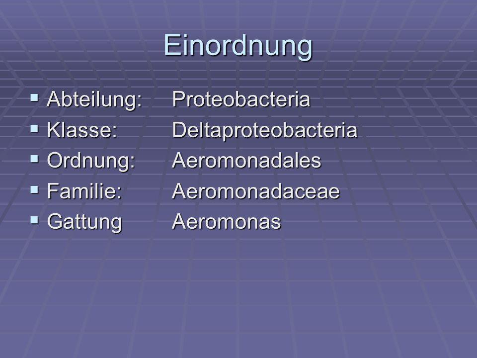Morphologie gramnegatives Kurzstäbchen gramnegatives Kurzstäbchen monopolare, monotriche Begeißelung monopolare, monotriche Begeißelung keine Sporen keine Sporen Abb.