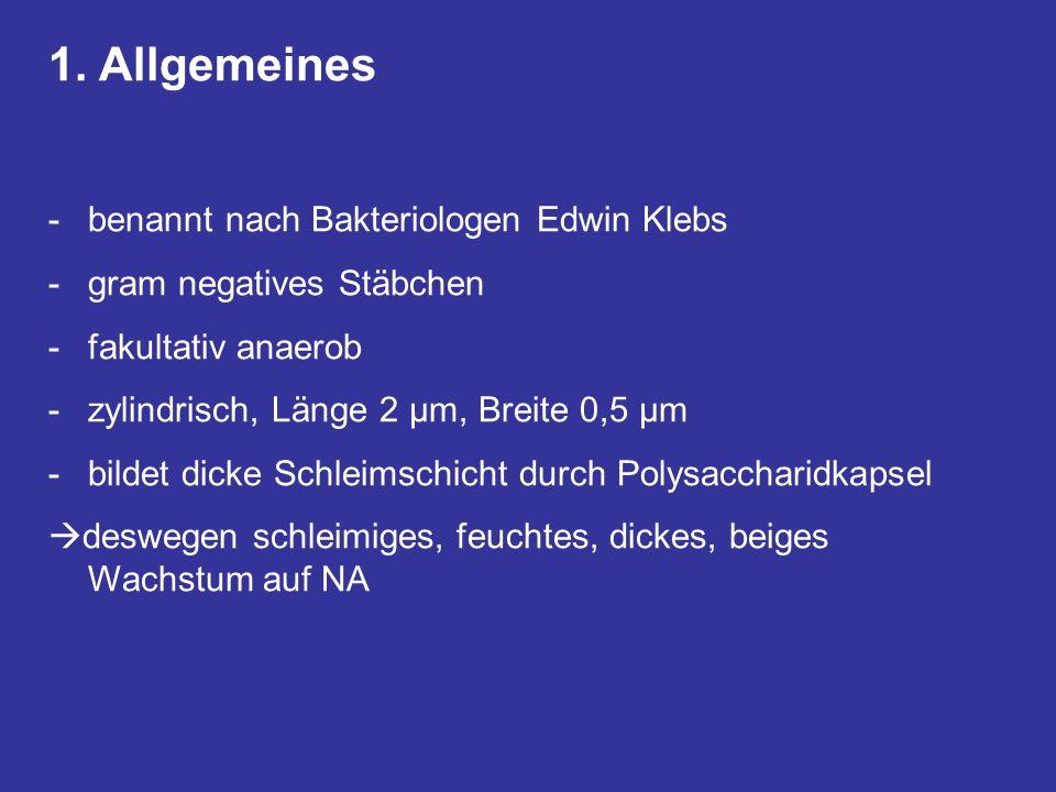 1. Allgemeines -benannt nach Bakteriologen Edwin Klebs -gram negatives Stäbchen -fakultativ anaerob -zylindrisch, Länge 2 µm, Breite 0,5 µm -bildet di