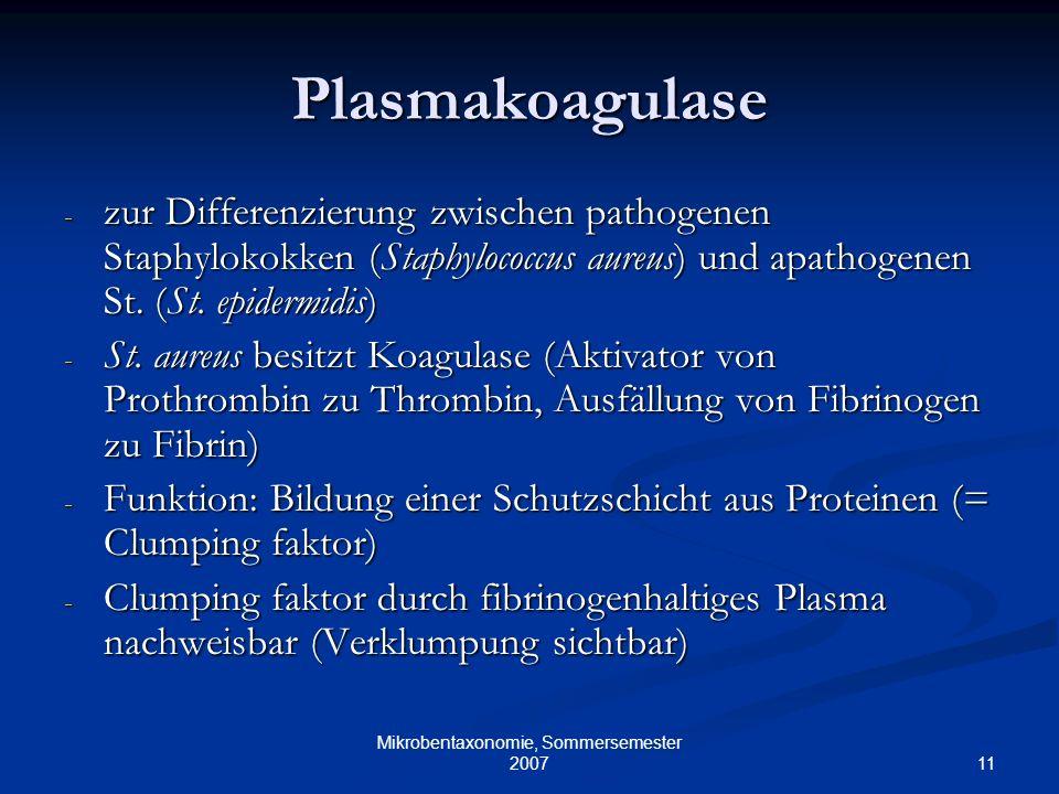 11 Mikrobentaxonomie, Sommersemester 2007 Plasmakoagulase - zur Differenzierung zwischen pathogenen Staphylokokken (Staphylococcus aureus) und apathog