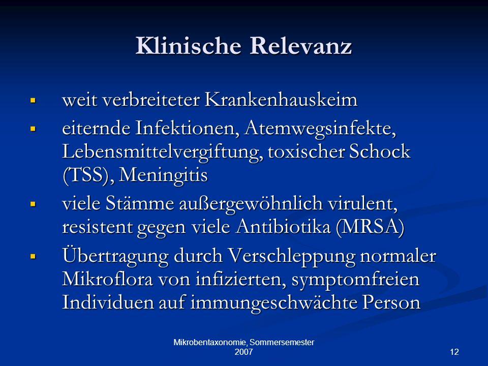 12 Mikrobentaxonomie, Sommersemester 2007 Klinische Relevanz weit verbreiteter Krankenhauskeim weit verbreiteter Krankenhauskeim eiternde Infektionen,