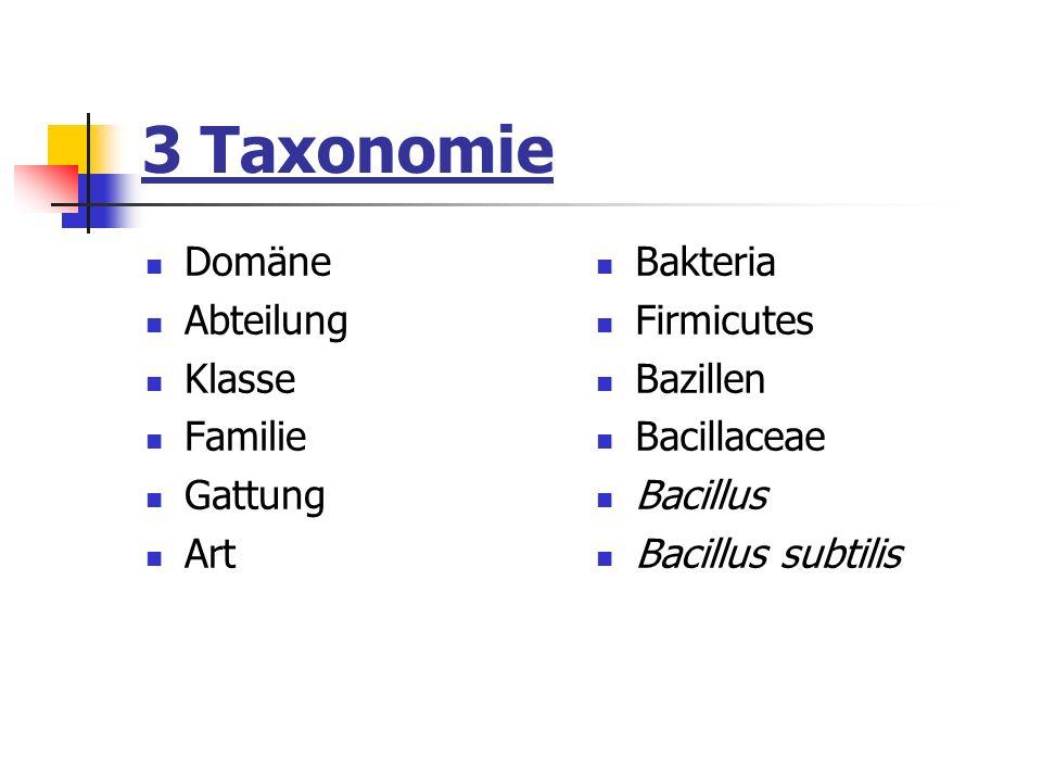 3 Taxonomie Domäne Abteilung Klasse Familie Gattung Art Bakteria Firmicutes Bazillen Bacillaceae Bacillus Bacillus subtilis
