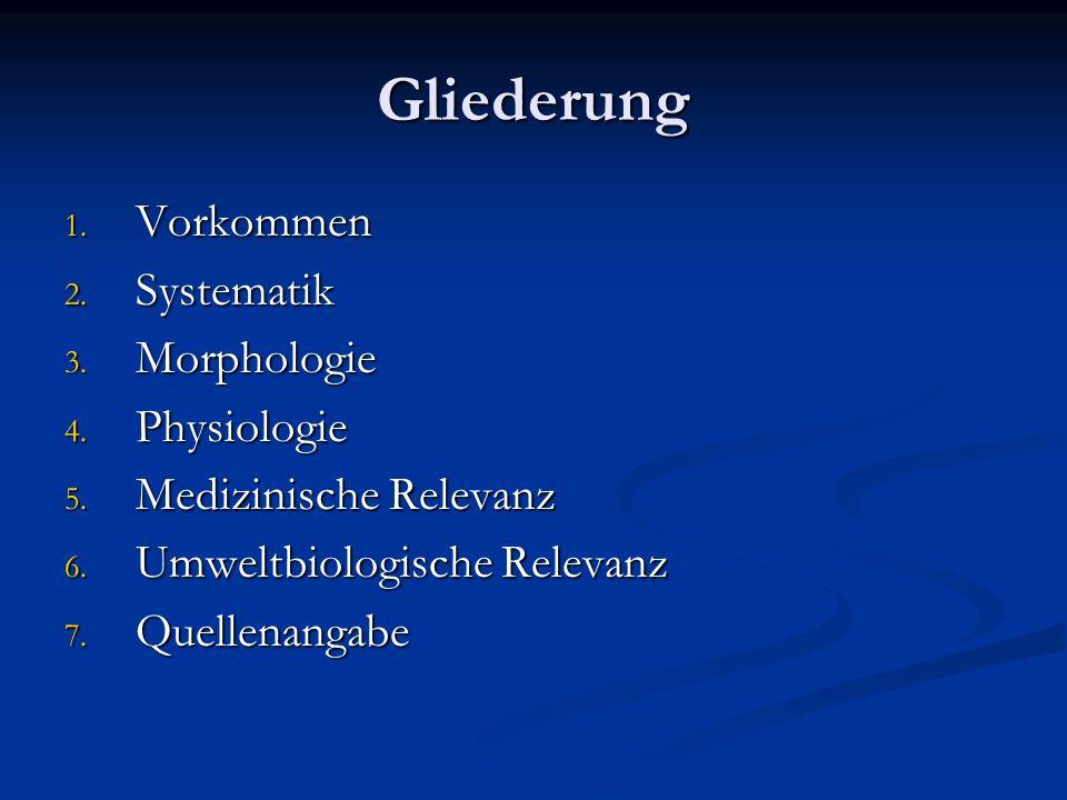 Gliederung 1. Vorkommen 2. Systematik 3. Morphologie 4. Physiologie 5. Medizinische Relevanz 6. Umweltbiologische Relevanz 7. Quellenangabe
