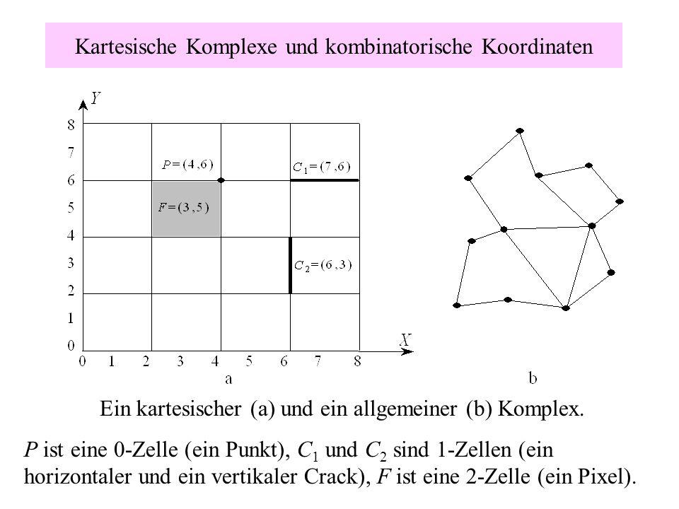 Kartesische Komplexe und kombinatorische Koordinaten Ein kartesischer (a) und ein allgemeiner (b) Komplex. P ist eine 0-Zelle (ein Punkt), C 1 und C 2