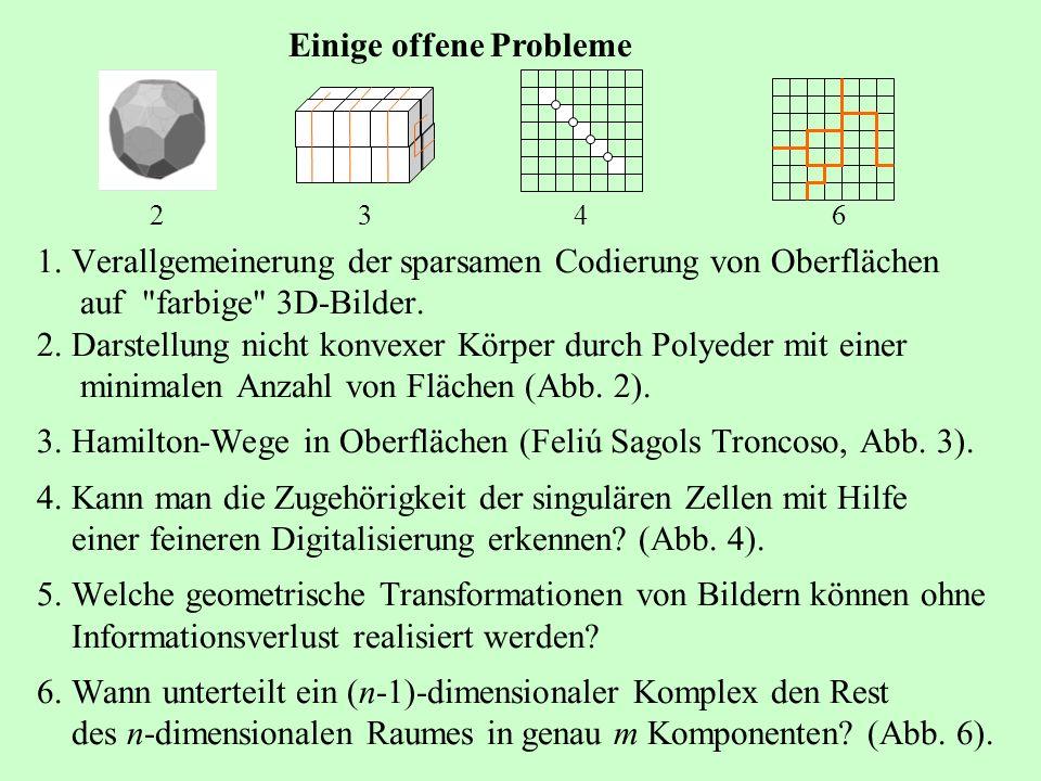 1. Verallgemeinerung der sparsamen Codierung von Oberflächen auf