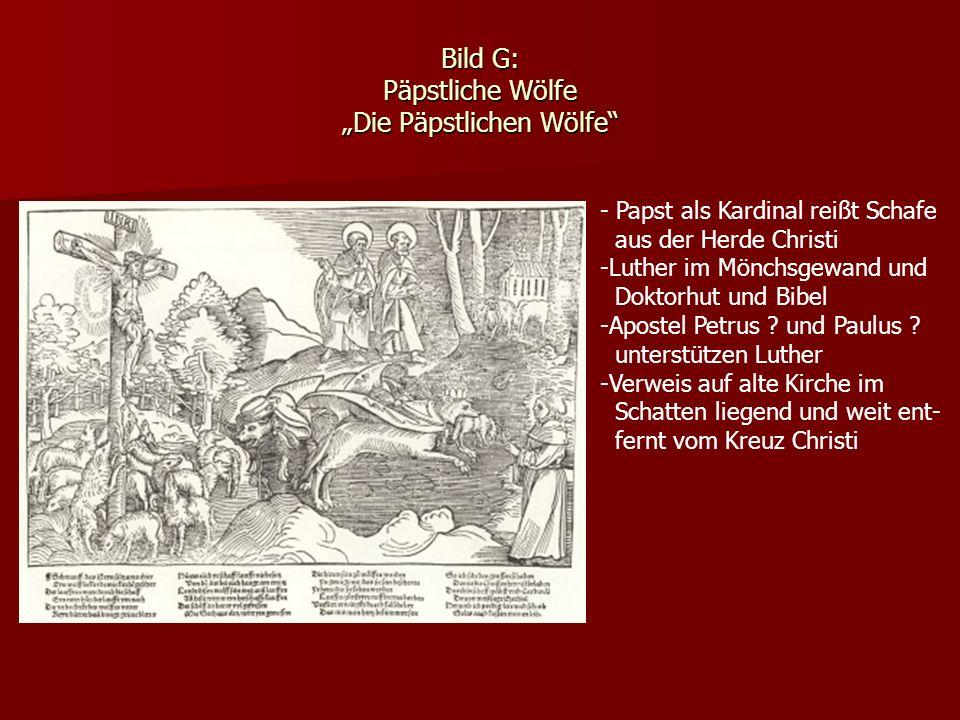 Bild G: Päpstliche Wölfe Die Päpstlichen Wölfe - Papst als Kardinal reißt Schafe aus der Herde Christi -Luther im Mönchsgewand und Doktorhut und Bibel