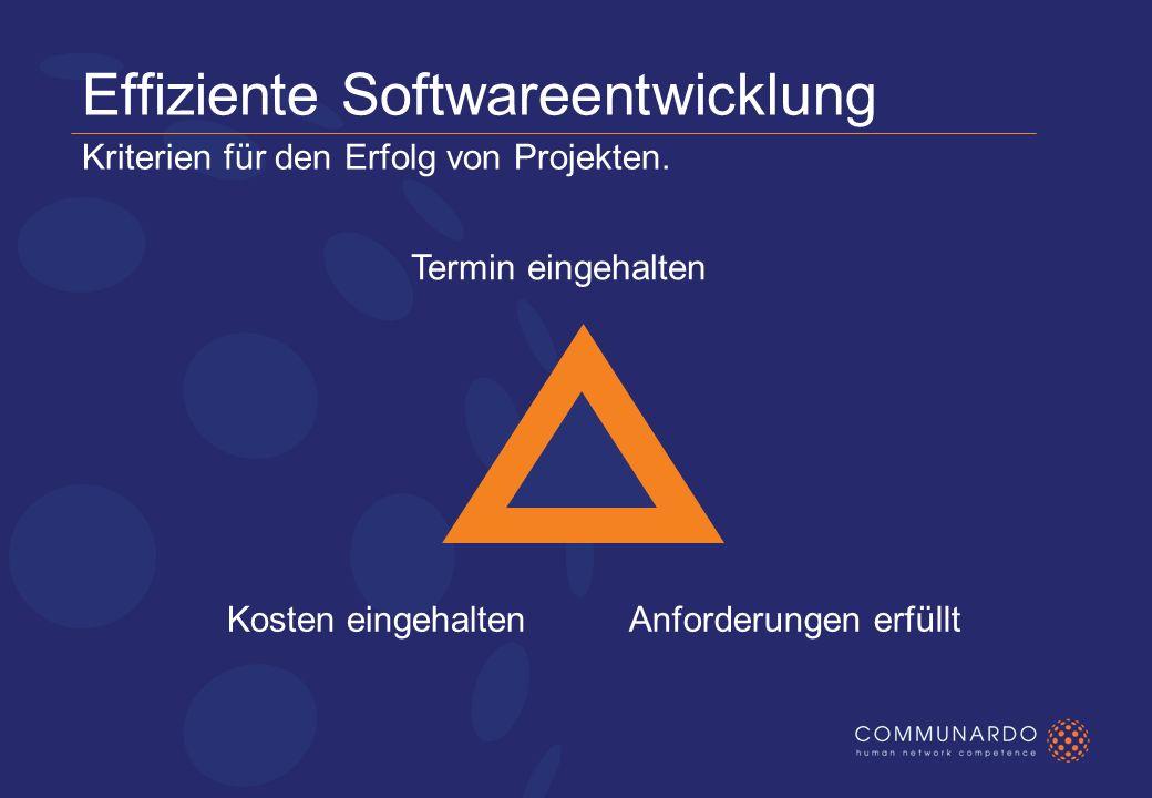 Effiziente Softwareentwicklung Kriterien für den Erfolg von Projekten.