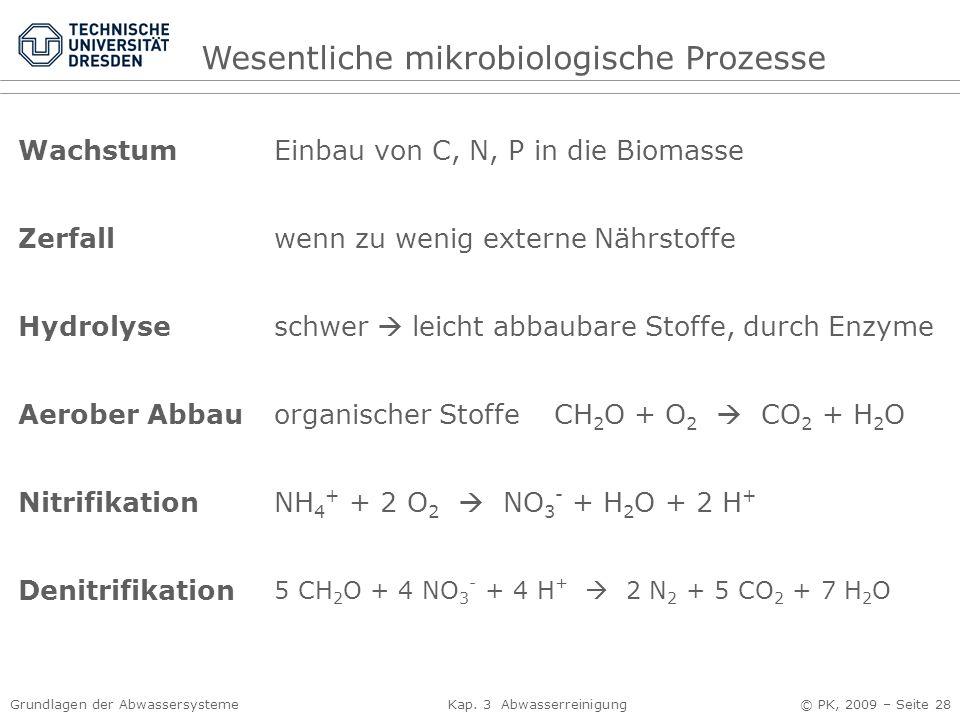 Grundlagen der Abwassersysteme Kap. 3 Abwasserreinigung © PK, 2009 – Seite 28 Wachstum Zerfall Hydrolyse Aerober Abbau Nitrifikation Denitrifikation E