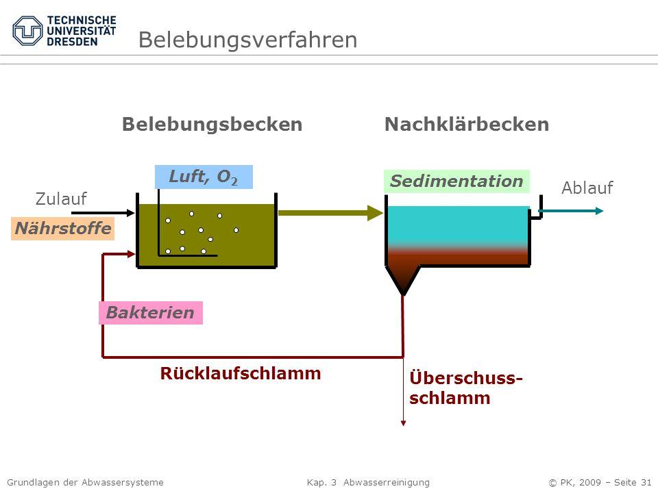 Grundlagen der Abwassersysteme Kap. 3 Abwasserreinigung © PK, 2009 – Seite 31 Zulauf BelebungsbeckenNachklärbecken Ablauf Rücklaufschlamm Überschuss-