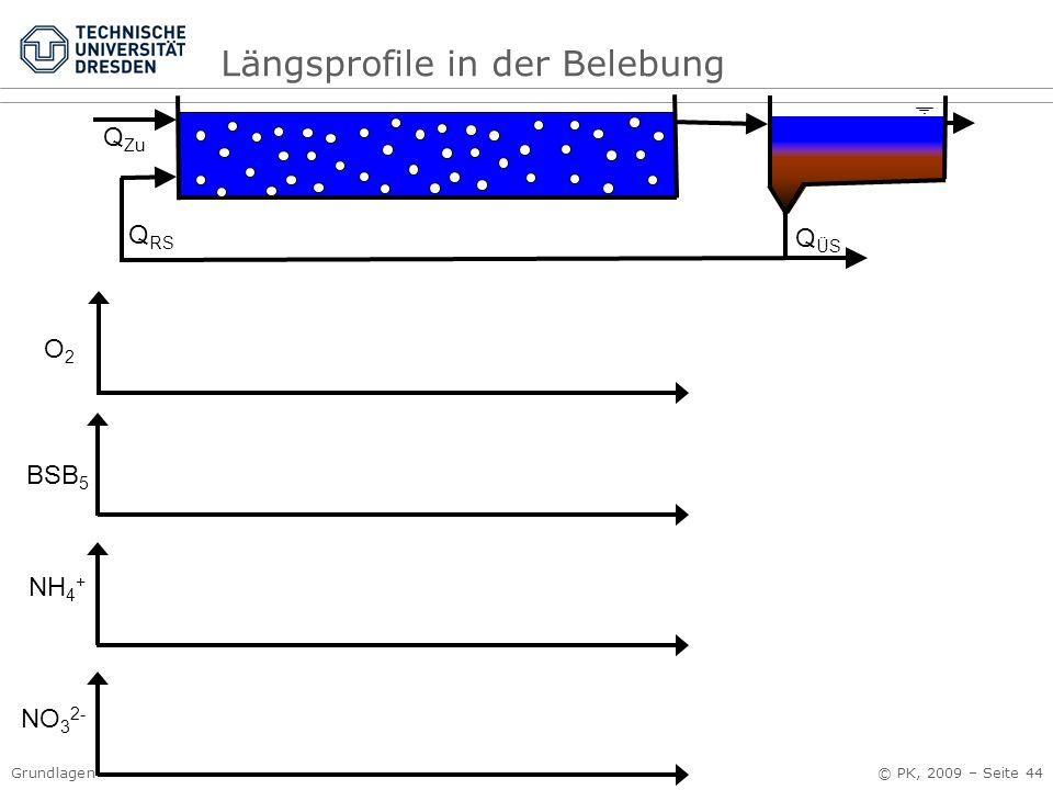 Grundlagen der Abwassersysteme Kap. 3 Abwasserreinigung © PK, 2009 – Seite 44 Q RS Q Zu NH 4 + BSB 5 O2O2 NO 3 2- Q ÜS Längsprofile in der Belebung