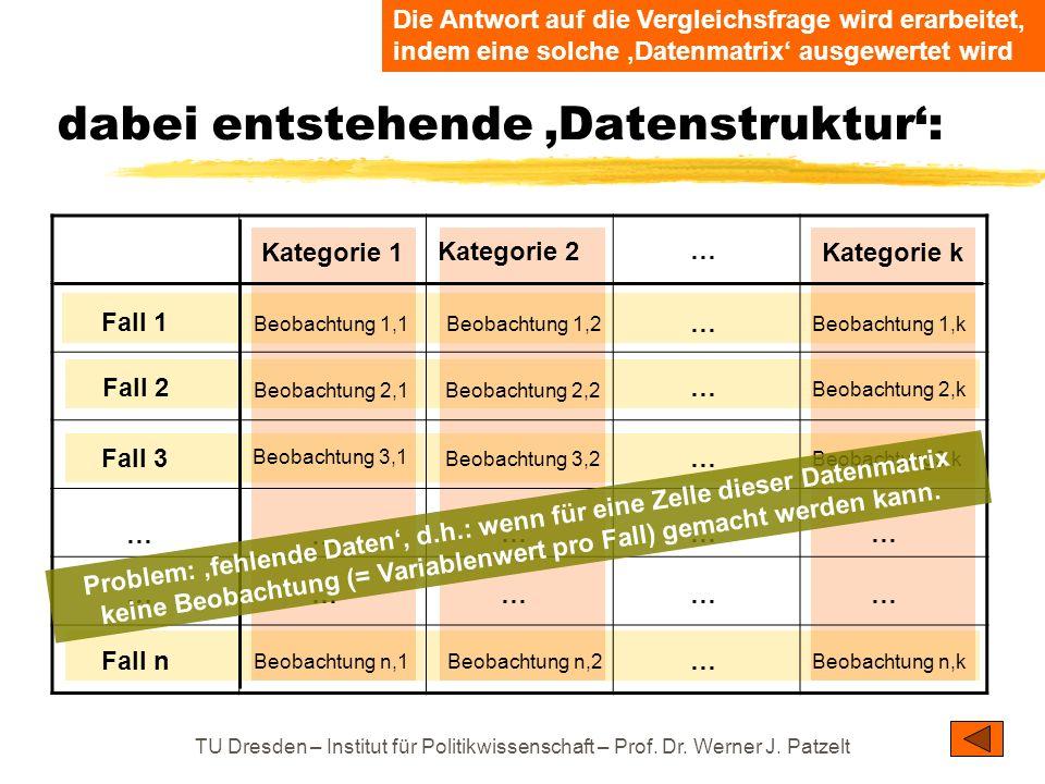 TU Dresden – Institut für Politikwissenschaft – Prof. Dr. Werner J. Patzelt dabei entstehende Datenstruktur: Fall 1 Fall 3 Fall 2 Fall n … … Kategorie