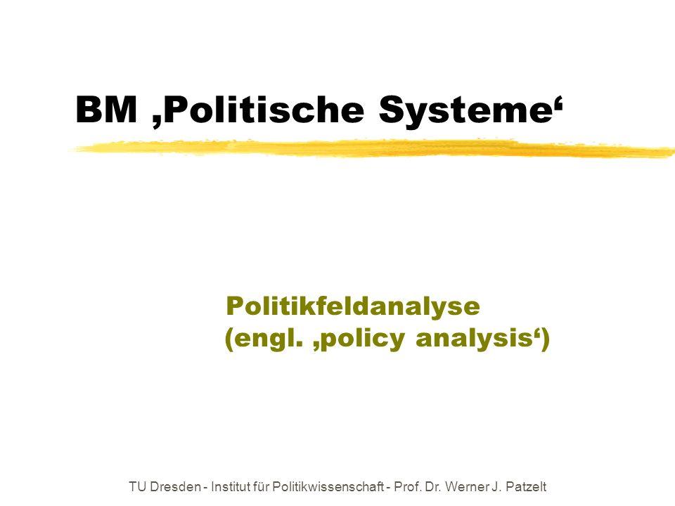 TU Dresden - Institut für Politikwissenschaft - Prof. Dr. Werner J. Patzelt BM Politische Systeme Politikfeldanalyse (engl. policy analysis)