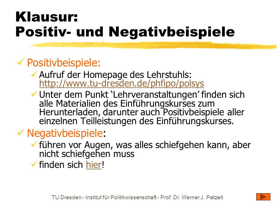 TU Dresden - Institut für Politikwissenschaft - Prof. Dr. Werner J. Patzelt Klausur: Positiv- und Negativbeispiele Positivbeispiele: Aufruf der Homepa