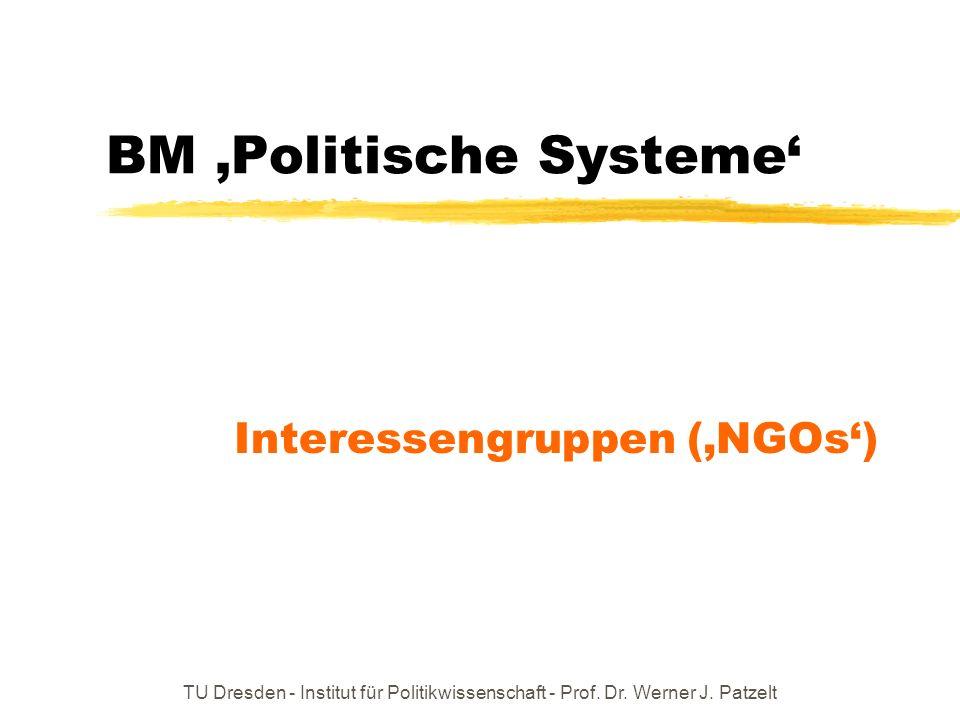 TU Dresden - Institut für Politikwissenschaft - Prof. Dr. Werner J. Patzelt BM Politische Systeme Interessengruppen (NGOs)