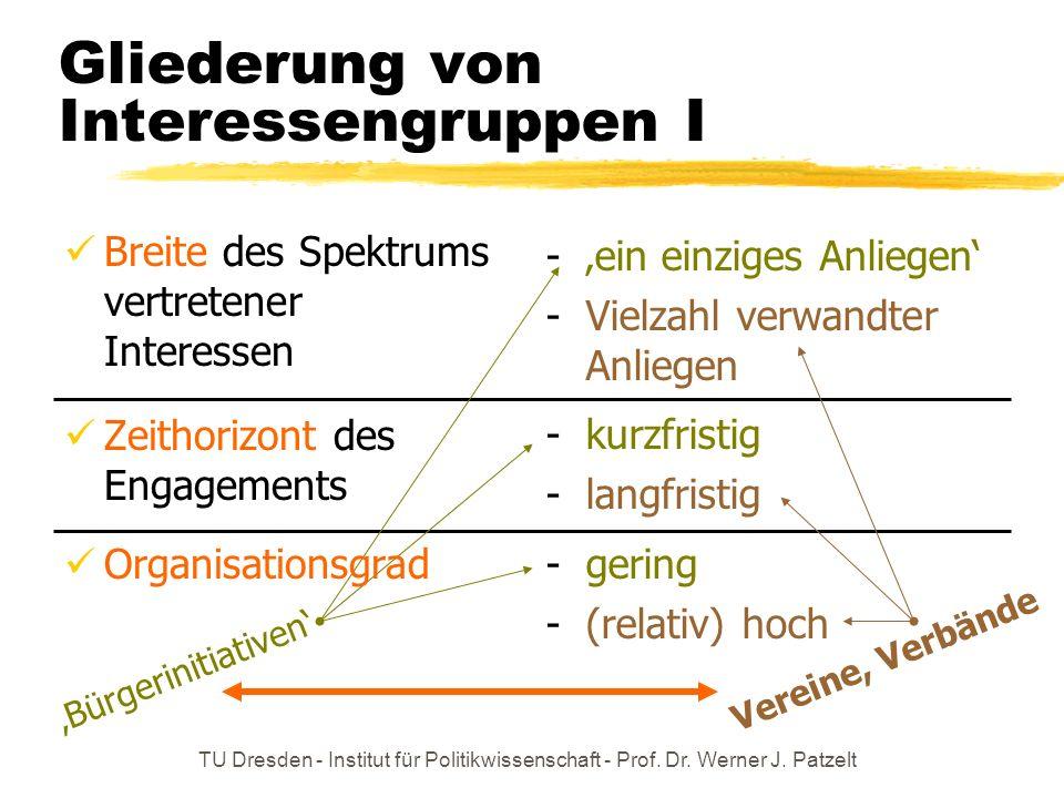 TU Dresden - Institut für Politikwissenschaft - Prof. Dr. Werner J. Patzelt - ein einziges Anliegen - Vielzahl verwandter Anliegen - kurzfristig - lan