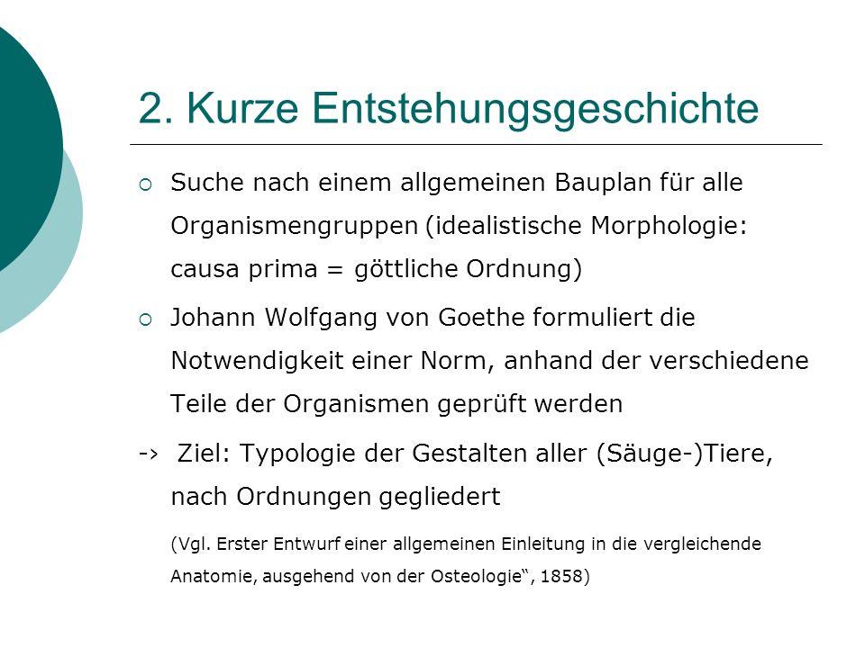 2. Kurze Entstehungsgeschichte Suche nach einem allgemeinen Bauplan für alle Organismengruppen (idealistische Morphologie: causa prima = göttliche Ord