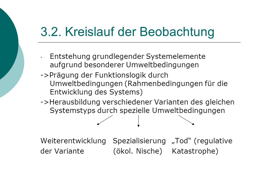 3.2. Kreislauf der Beobachtung - Entstehung grundlegender Systemelemente aufgrund besonderer Umweltbedingungen ->Prägung der Funktionslogik durch Umwe