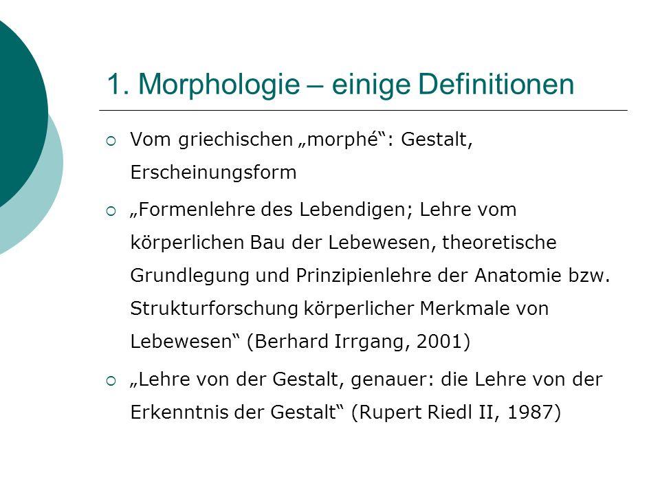 1. Morphologie – einige Definitionen Vom griechischen morphé: Gestalt, Erscheinungsform Formenlehre des Lebendigen; Lehre vom körperlichen Bau der Leb