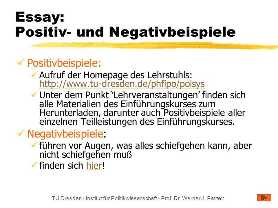 TU Dresden - Institut für Politikwissenschaft - Prof. Dr. Werner J. Patzelt Essay: Positiv- und Negativbeispiele Positivbeispiele: Aufruf der Homepage