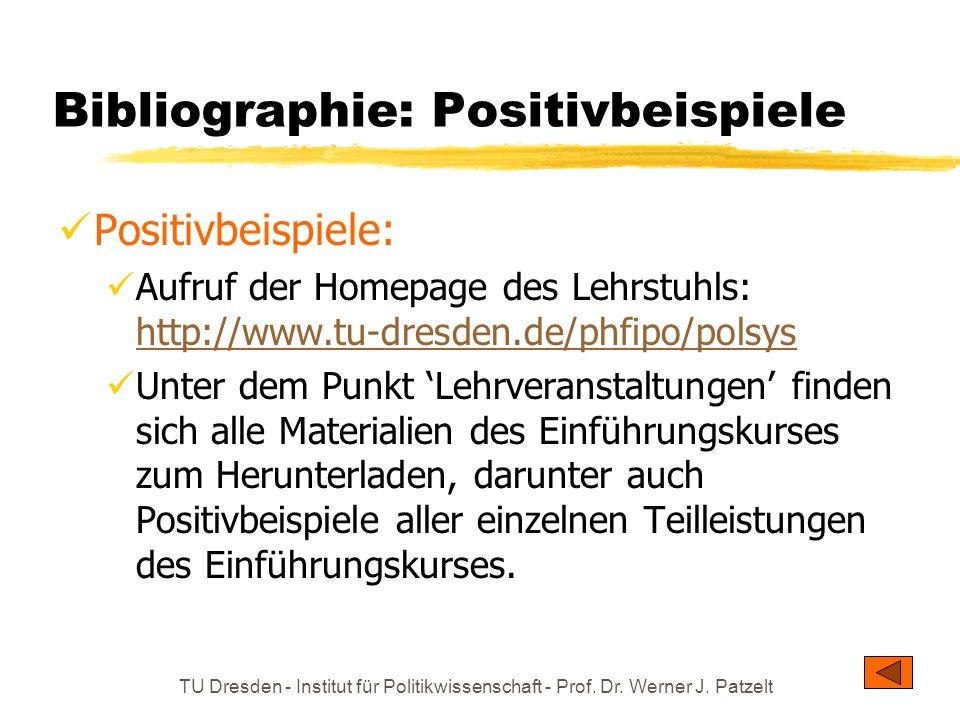 TU Dresden - Institut für Politikwissenschaft - Prof. Dr. Werner J. Patzelt Bibliographie: Positivbeispiele Positivbeispiele: Aufruf der Homepage des