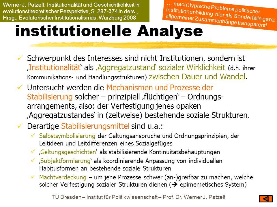 institutionelle Analyse Schwerpunkt des Interesses sind nicht Institutionen, sondern istInstitutionalität als Aggregatzustand sozialer Wirklichkeit (d