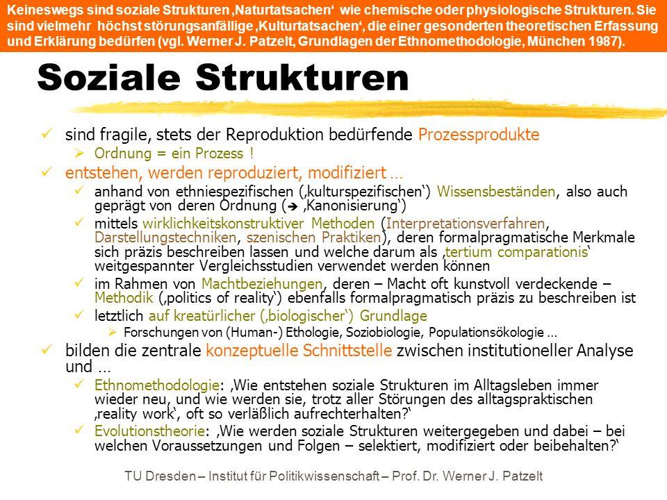 TU Dresden – Institut für Politikwissenschaft – Prof. Dr. Werner J. Patzelt Soziale Strukturen sind fragile, stets der Reproduktion bedürfende Prozess