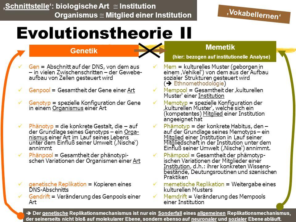 TU Dresden – Institut für Politikwissenschaft – Prof. Dr. Werner J. Patzelt Evolutionstheorie II Gen = Abschnitt auf der DNS, von dem aus – in vielen