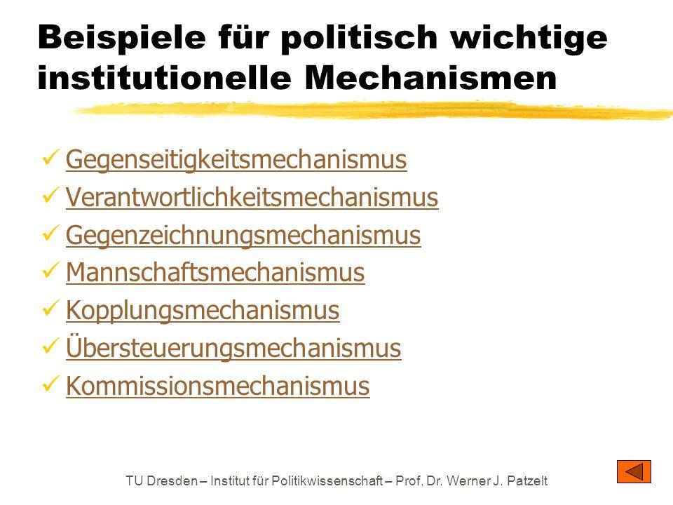 TU Dresden – Institut für Politikwissenschaft – Prof. Dr. Werner J. Patzelt Beispiele für politisch wichtige institutionelle Mechanismen Gegenseitigke