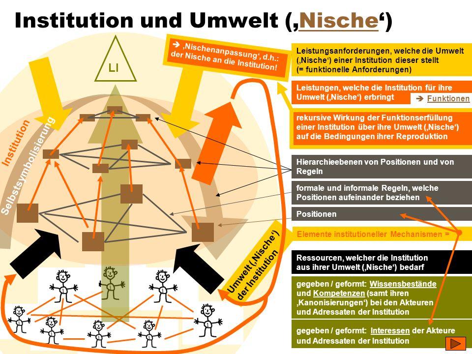 TU Dresden – Institut für Politikwissenschaft – Prof. Dr. Werner J. Patzelt LI Institution und Umwelt (Nische)Nische Positionen formale und informale