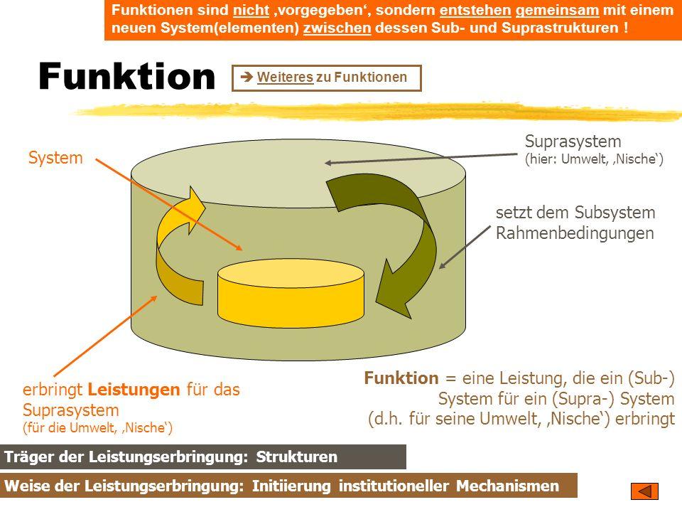 TU Dresden – Institut für Politikwissenschaft – Prof. Dr. Werner J. Patzelt Funktion System Suprasystem (hier: Umwelt, Nische) setzt dem Subsystem Rah
