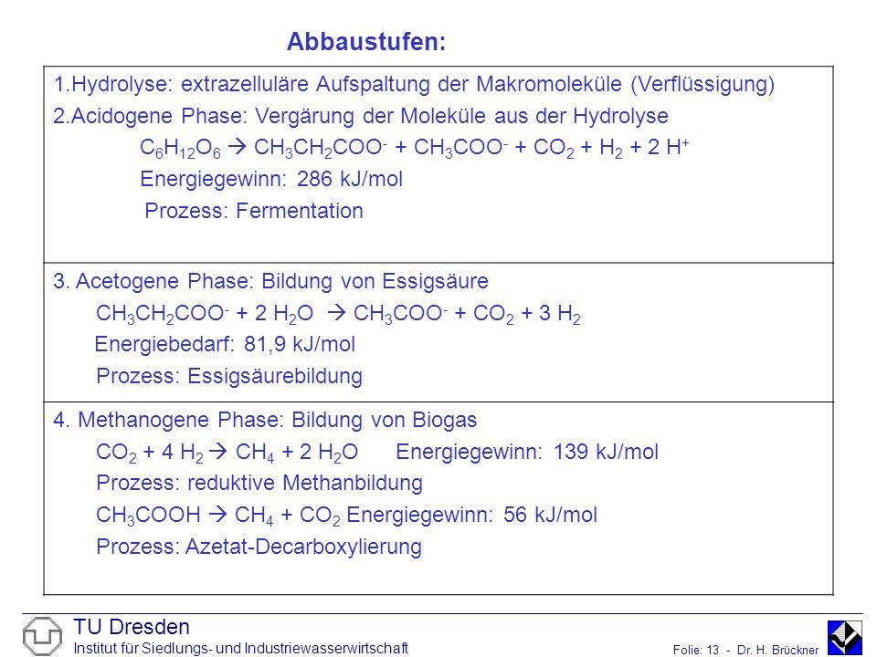 TU Dresden Institut für Siedlungs- und Industriewasserwirtschaft Folie: 13 - Dr. H. Brückner 1.Hydrolyse: extrazelluläre Aufspaltung der Makromoleküle