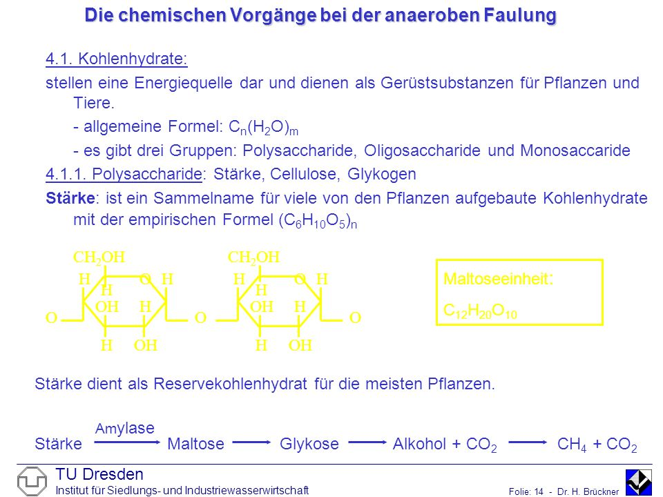 TU Dresden Institut für Siedlungs- und Industriewasserwirtschaft Folie: 14 - Dr. H. Brückner Die chemischen Vorgänge bei der anaeroben Faulung 4.1. Ko