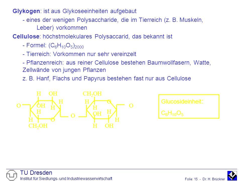 TU Dresden Institut für Siedlungs- und Industriewasserwirtschaft Folie: 15 - Dr. H. Brückner Glykogen: ist aus Glykoseeinheiten aufgebaut - eines der