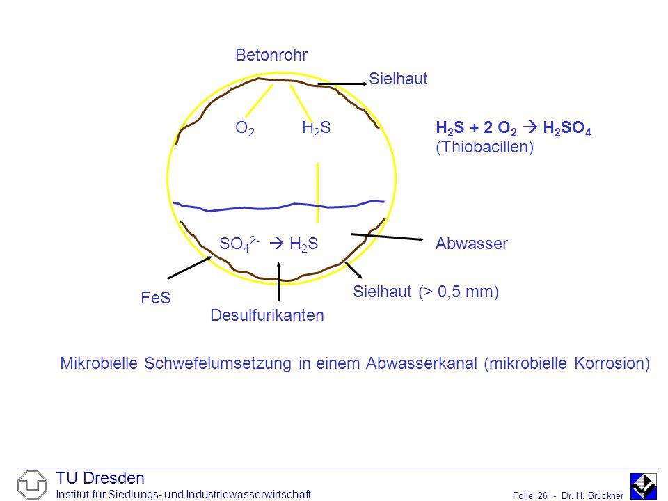 TU Dresden Institut für Siedlungs- und Industriewasserwirtschaft Folie: 26 - Dr. H. Brückner Betonrohr Sielhaut O 2 H 2 SH 2 S + 2 O 2 H 2 SO 4 (Thiob