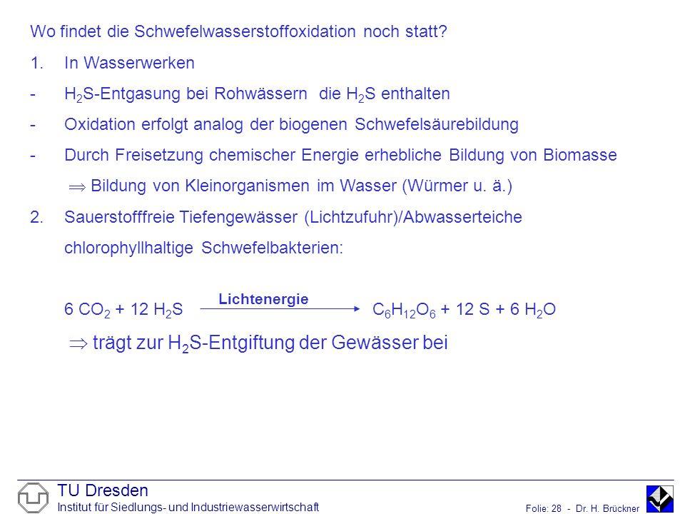 TU Dresden Institut für Siedlungs- und Industriewasserwirtschaft Folie: 28 - Dr. H. Brückner Wo findet die Schwefelwasserstoffoxidation noch statt? 1.