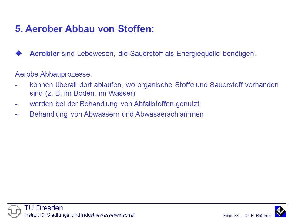 TU Dresden Institut für Siedlungs- und Industriewasserwirtschaft Folie: 33 - Dr. H. Brückner 5. Aerober Abbau von Stoffen: Aerobier sind Lebewesen, di