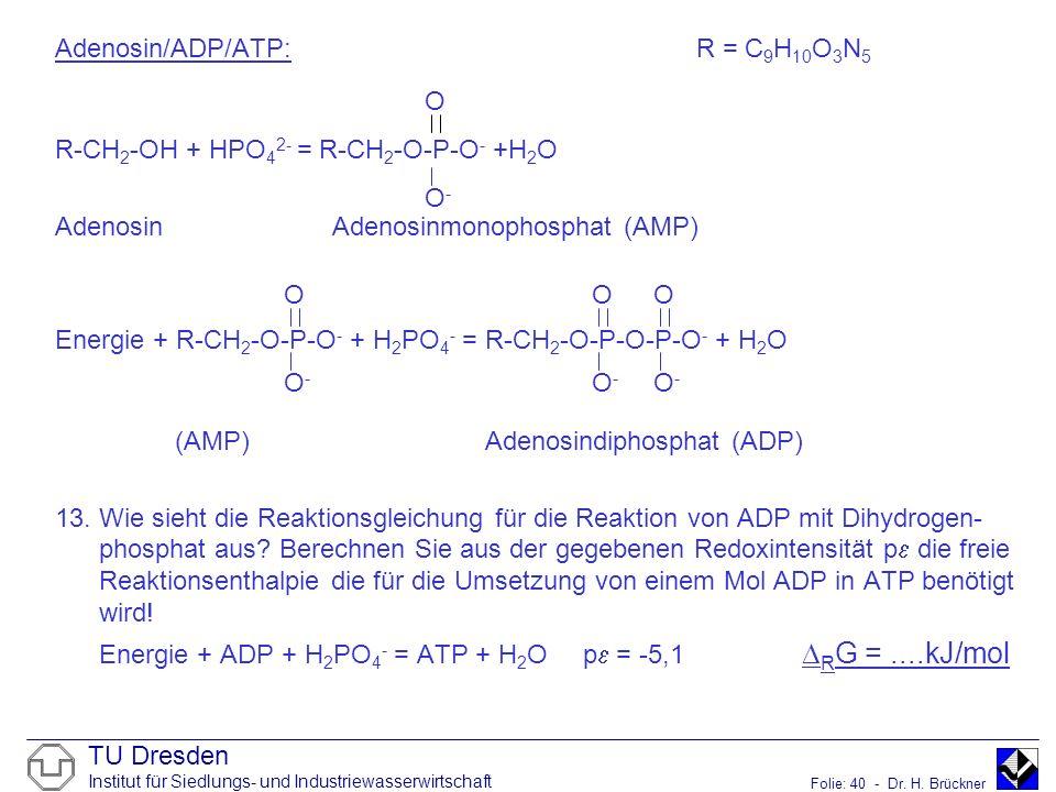 TU Dresden Institut für Siedlungs- und Industriewasserwirtschaft Folie: 40 - Dr. H. Brückner Adenosin/ADP/ATP: R = C 9 H 10 O 3 N 5 R-CH 2 -OH + HPO 4