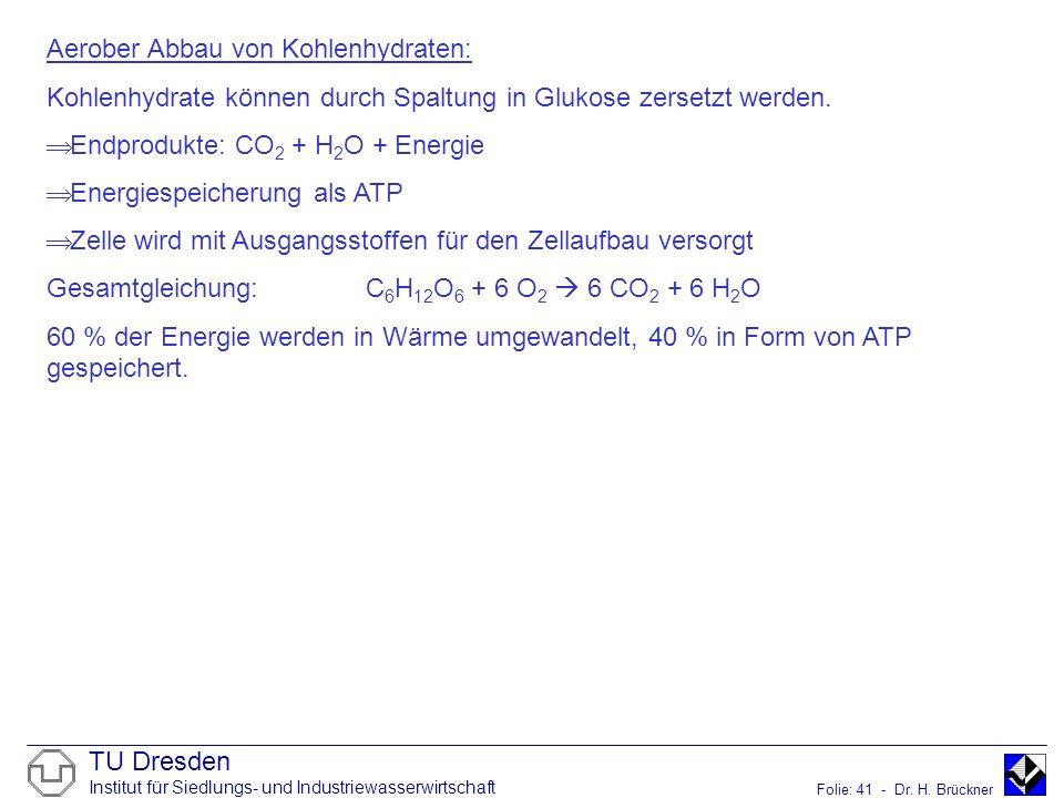 TU Dresden Institut für Siedlungs- und Industriewasserwirtschaft Folie: 41 - Dr. H. Brückner Aerober Abbau von Kohlenhydraten: Kohlenhydrate können du