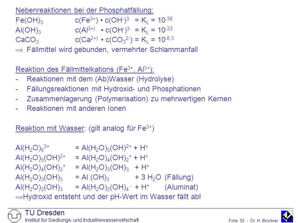 TU Dresden Institut für Siedlungs- und Industriewasserwirtschaft Folie: 52 - Dr. H. Brückner Nebenreaktionen bei der Phosphatfällung: Fe(OH) 3 c(Fe 3+
