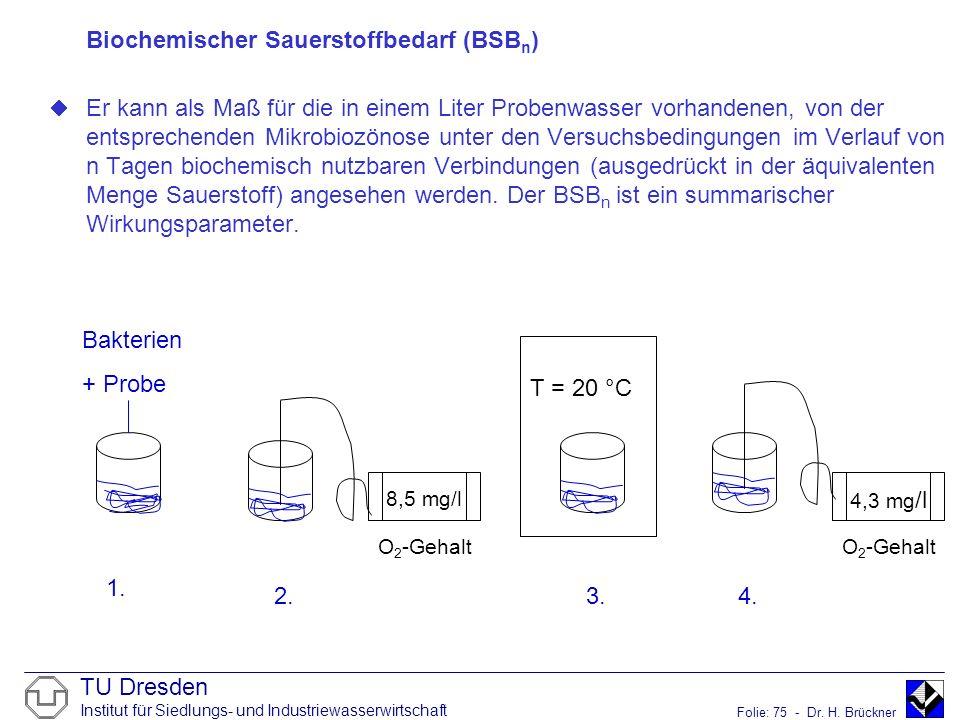 TU Dresden Institut für Siedlungs- und Industriewasserwirtschaft Folie: 75 - Dr. H. Brückner Biochemischer Sauerstoffbedarf (BSB n ) Er kann als Maß f
