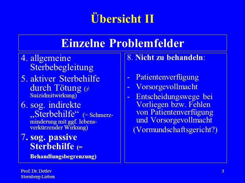 Prof.Dr. Detlev Sternberg-Lieben 3 Einzelne Problemfelder 4.