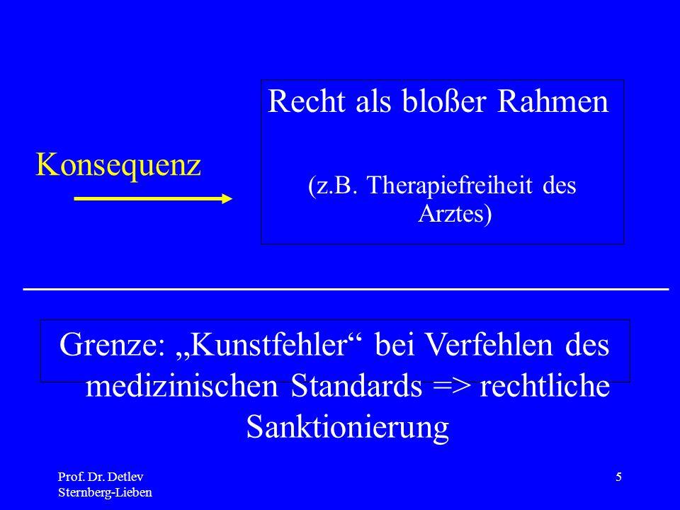Prof.Dr. Detlev Sternberg-Lieben 5 Recht als bloßer Rahmen (z.B.