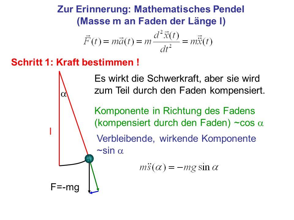 Zur Erinnerung: Mathematisches Pendel (Masse m an Faden der Länge l) Schritt 1: Kraft bestimmen ! F=-mg Komponente in Richtung des Fadens (kompensiert